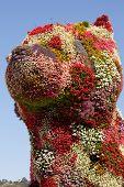 BILBAO, SPAIN - SEPT 3 2014 : Jeff Koon's