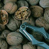 Walnut And Nut Cracker