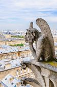 Gargoyle Observes Paris
