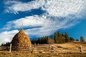 Beautiful Morning Countryside Landscape. Carpathian, Ukraine