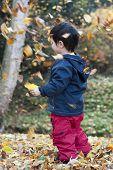 Child In Autumn Forest