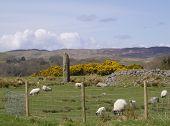 Pastoral Scene in Kilmartin