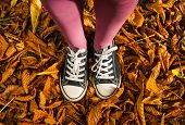 standing on autumn leaves texture background