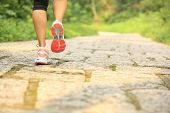 oung fitness woman legs walking on forest trail