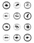 a set of twelve black labels with some fishes and text