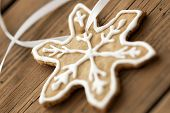 Ginger Bread Star Macro