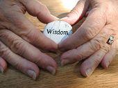 wisdomB