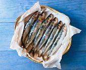 Fresh Mediterranean Sardines.