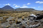 Mount Ngauruhoe Landscape, New Zealand