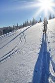 Back Country Skier (ski Touring)