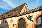 Princely stables with frog sculpture, Castle Buedingen, Germany