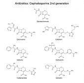 Structural Chemical Formulas Of Antibiotics - Cephalosporins Of Second Generation