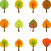 Multicolor Fall Trees, Trees Vector