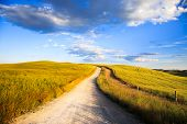 Tuscany, White Road On Rolling Hill, Rural Landscape, Italy, Europe.