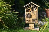 foto of biodiversity  - Wooden insect house decorative bug hotel ladybird and bee home for butterfly hibernation and ecological gardening - JPG
