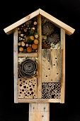 image of biodiversity  - Wooden insect house decorative bug hotel ladybird and bee home for butterfly hibernation and ecological gardening - JPG