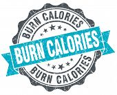 Burn Calories Vintage Turquoise Seal Isolated On White