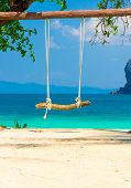 Seaside Swing Under the Trees