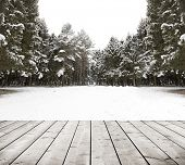 winter forest with trees covered snow with wood planks floor