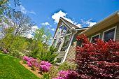 Spring Landscape Front Of House