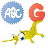 cute cartoon comic isolated vector animal abc: G is for Gharial