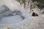 Mud Volcano With Bison