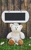 Lonely teddy bear sitting in the green in summertime with a wooden sign for a advertising message.