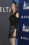 LOS ANGELES - FEB 5:  Emily Ratajkowski at the Delta Air Lines Toasts 2015 GRAMMYs at a SOHO House on February 5, 2015 in West Hollywood, CA