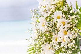 image of cabana  - white flowers on wedding cabana on natural outdoor background - JPG