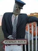 Pumpkin Patch Greeter