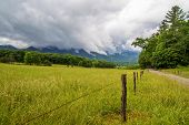 picture of cade  - Cades Cove meadow in the Great Smoky Mountains National Park with a mountain background shrouded in fog - JPG