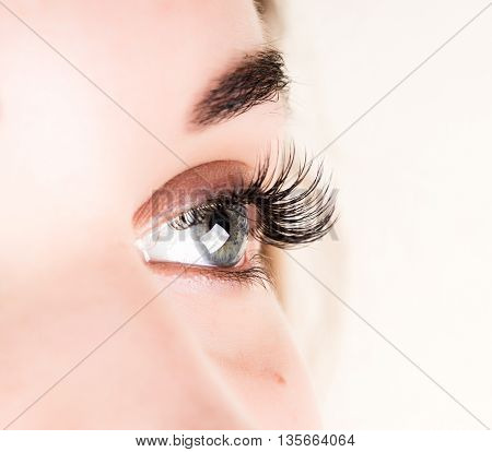 poster of Beautiful young woman eyelash extension. Woman eye with long eyelashes. Beauty salon concept.