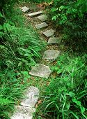 pic of stepping stones  - stair to tropical mountain - JPG