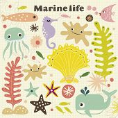 vector cute marinelife
