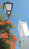 Lamp, Church, Flowers