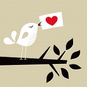 image of heart shape  - bird love card - JPG
