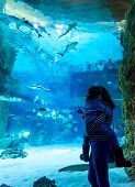 Постер, плакат: Young Woman With Child Watch A Fish In Aquarium People Visit The Large Aquarium Family Looks At Sh