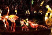Bird Lanterns