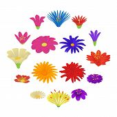 Detailed Flowers Icons Set. Cartoon Illustration Of 16 Detailed Flowers Vector Icons For Web poster