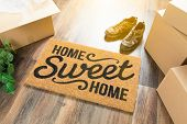 Home Sweet Home Welcome Mat, Moving Boxes, Shoes and Plant on Hard Wood Floors poster