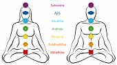 Seven Main Chakras With Sanskrit Names - Woman And Man Sitting In Yoga Meditation Position. Symbol F poster
