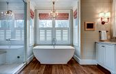 High end bathroom with large white bathtub and shiplap siding. poster