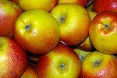 Apples 01