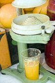 Laranjas de máquina de suco de frutas Israel de Jerusalém