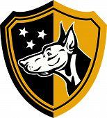 Doberman Guard Dog Stars Shield