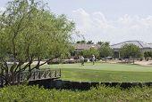 Active Seniors Playing Golf