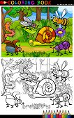 foto of slug  - Coloring Book or Coloring Page Cartoon Illustration of Funny Insects or Bugs on the Meadow for Children Education - JPG