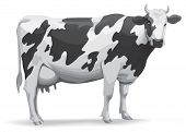 pic of caw  - Cow illustration for best prints and other use - JPG