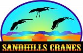 Sandhills Cranes with sun and text