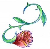 picture of scrollwork  - Winding thorny red rose with scrollwork - JPG